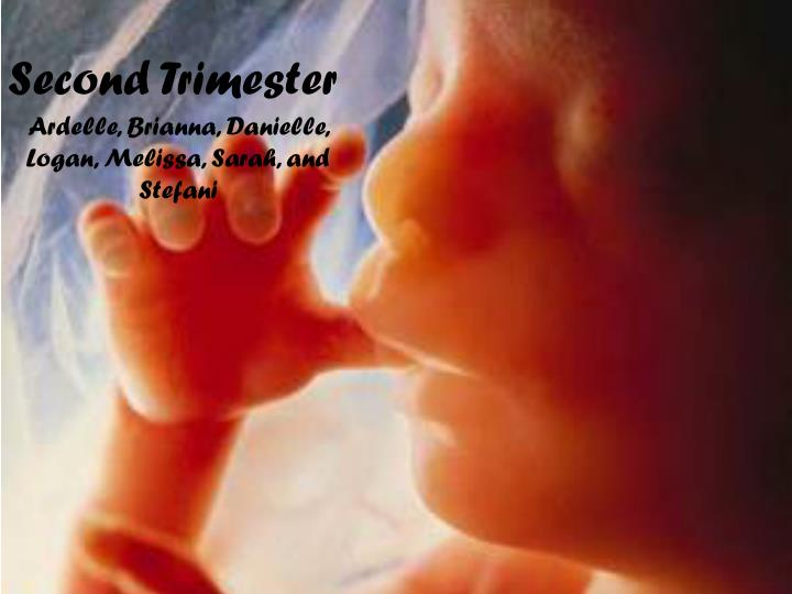 second trimester n.