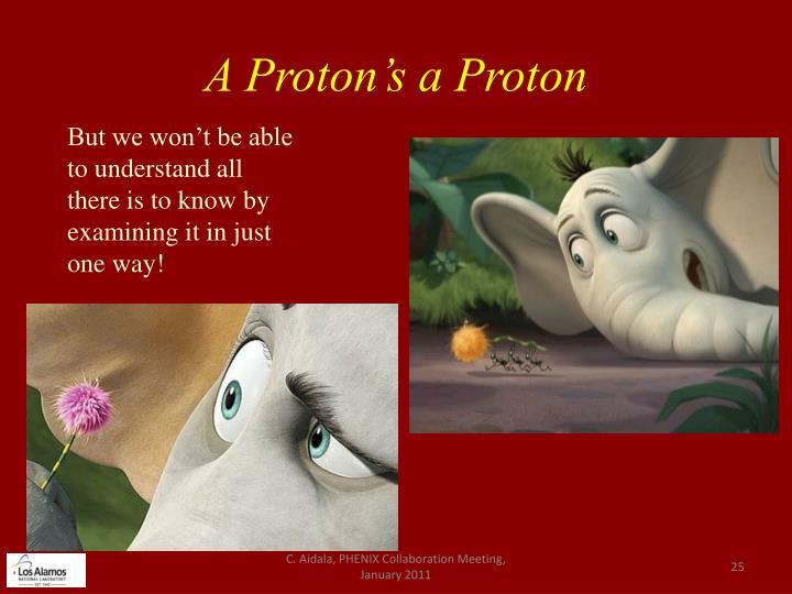 A Proton's a Proton
