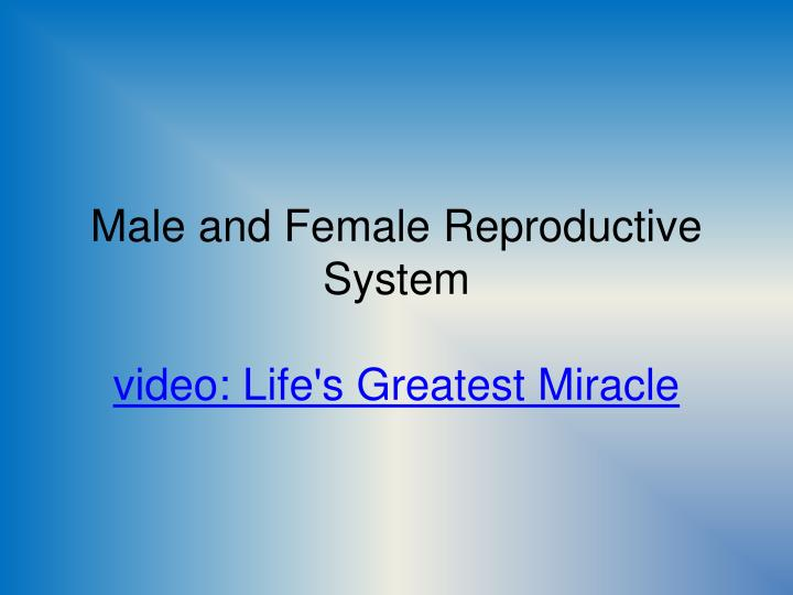 male and female reproductive system video life s greatest miracle n.