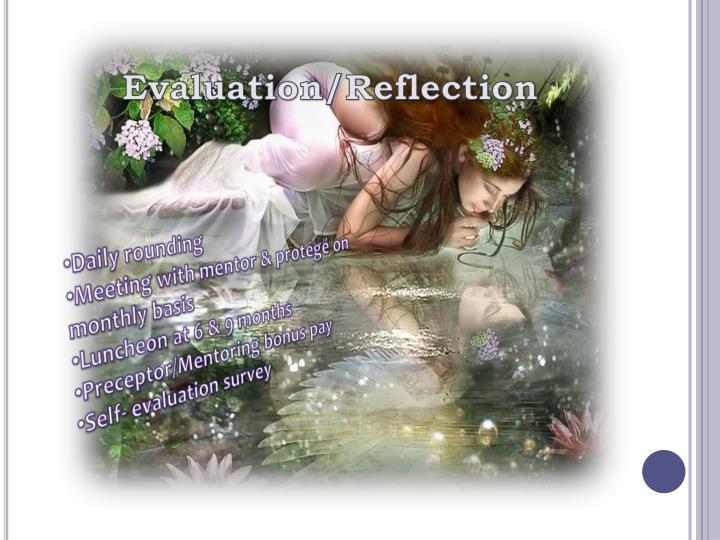 Evaluation/Reflection
