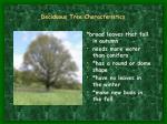 deciduous tree characteristics