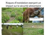 risques d inondation exer ant un impact sur la s curit alimentaire