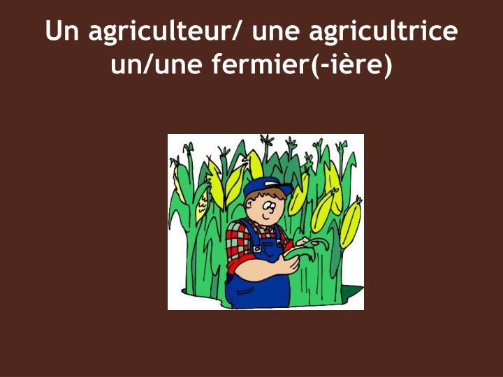 Un agriculteur une agricultrice un une fermier i re