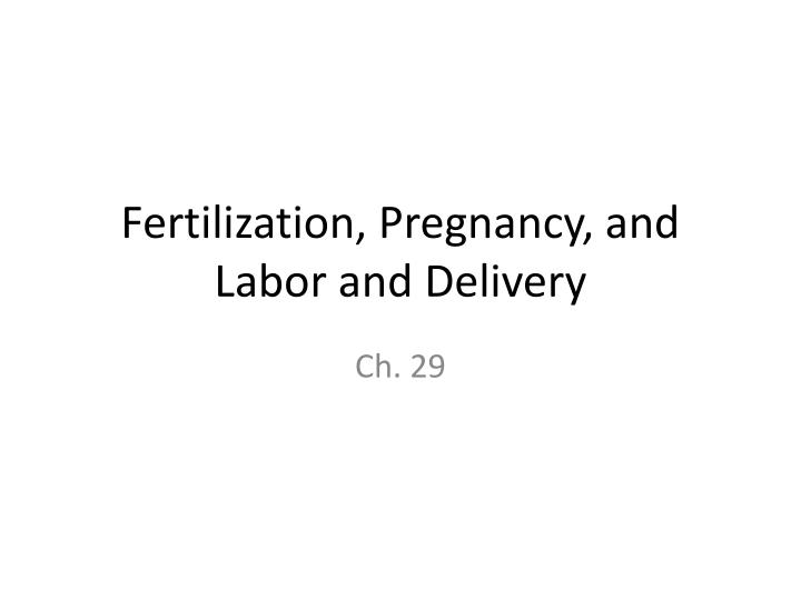 Fertilization pregnancy and labor and delivery