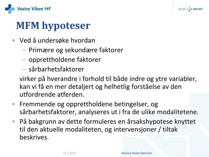 MFM hypoteser