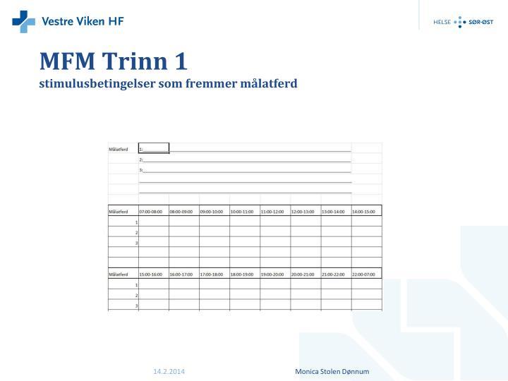MFM Trinn 1