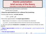 atomic polarization brief survey of the theory calculation of the atomic density matrix