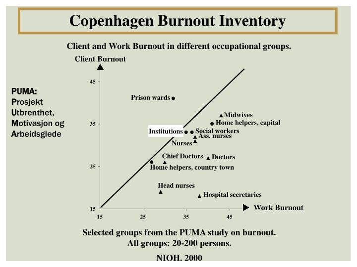 Copenhagen Burnout Inventory