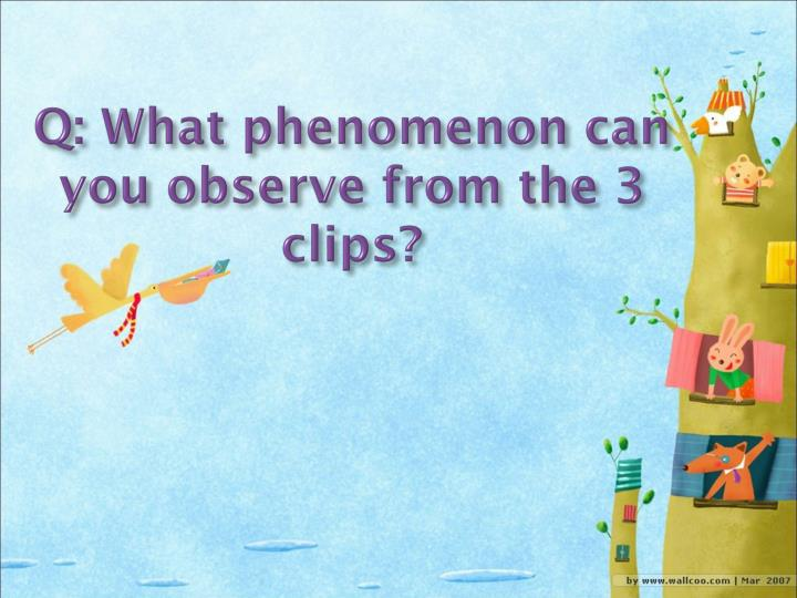 Q what phenomenon can you observe from the 3 clips