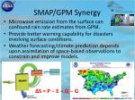 smap gpm synergy