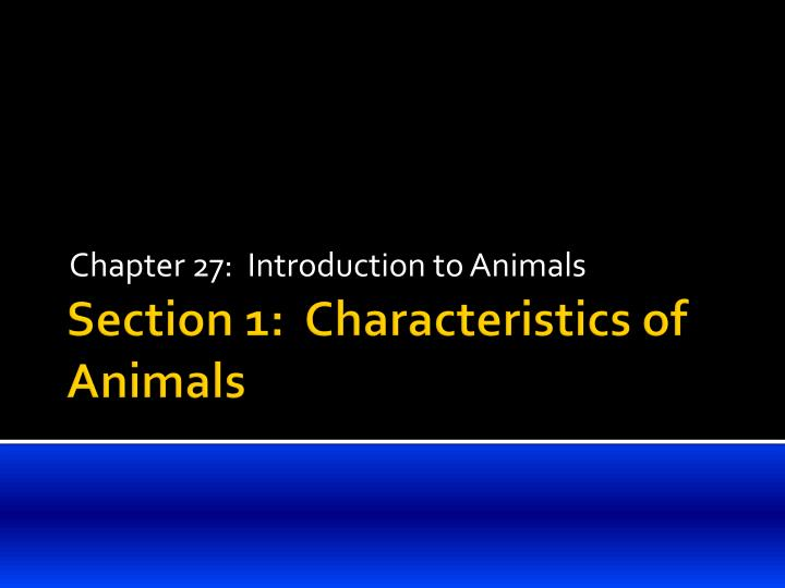 chapter 27 introduction to animals n.