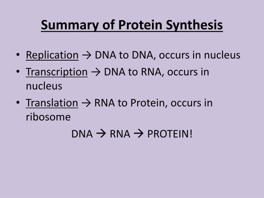 PPT - Protein Translation PowerPoint Presentation - ID:2266106