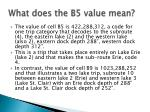 what does the b5 value mean