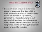 what is excessive bail