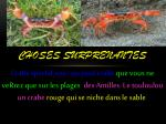 choses surprenantes
