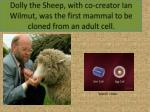 dolly the sheep with co creator ian wilmut was the first mammal to be cloned from an adult cell