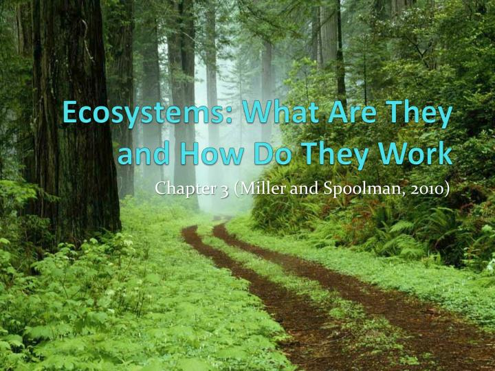 ecosystems what are they and how do they work n.
