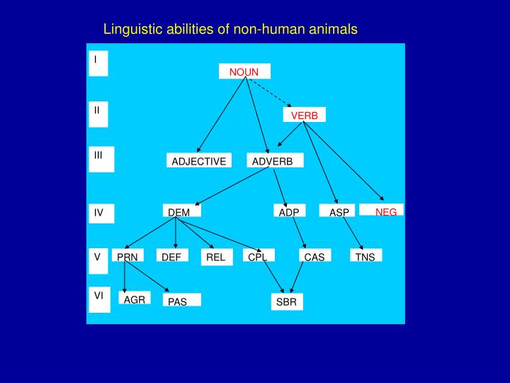 Linguistic abilities of non-human animals