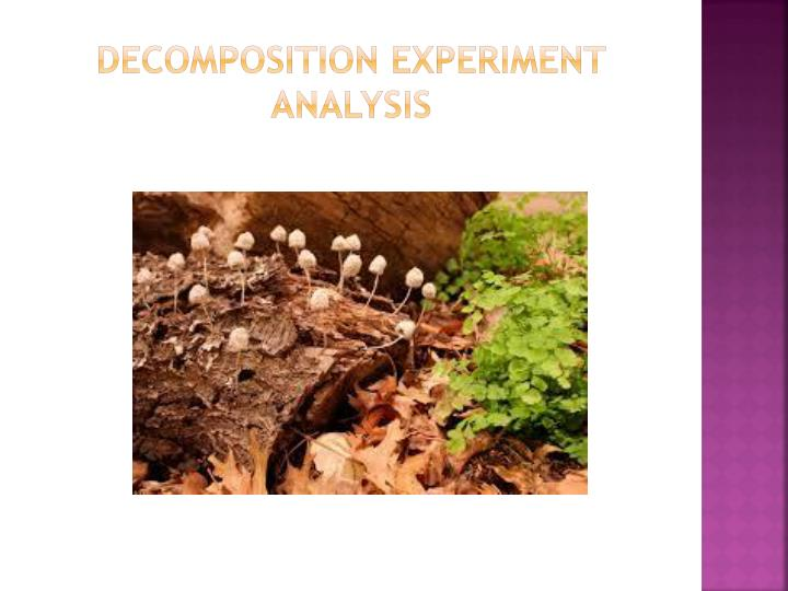 grass decomposition experiment The use of grow buddies will help to personalize science experiments for students of all  (fertilizer) on rye grass seed  decomposition experiment .
