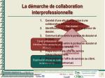 la d marche de collaboration interprofessionnelle1