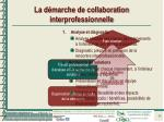 la d marche de collaboration interprofessionnelle14