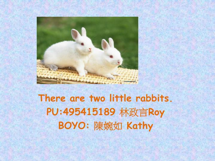 there are two little rabbits pu 495415189 roy boyo kathy n.