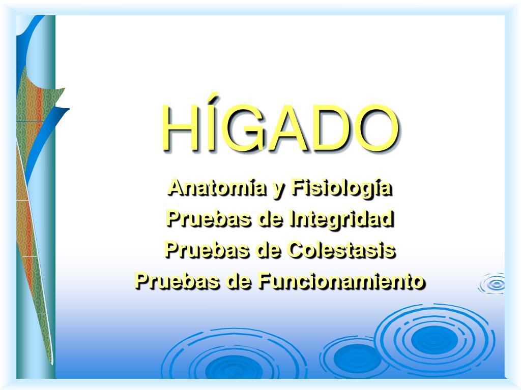 PPT - HÍGADO PowerPoint Presentation - ID:2267810