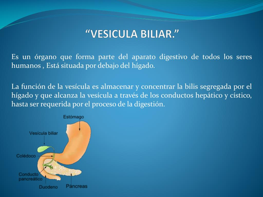 "PPT - ""VESICULA BILIAR."" PowerPoint Presentation - ID:2267822"
