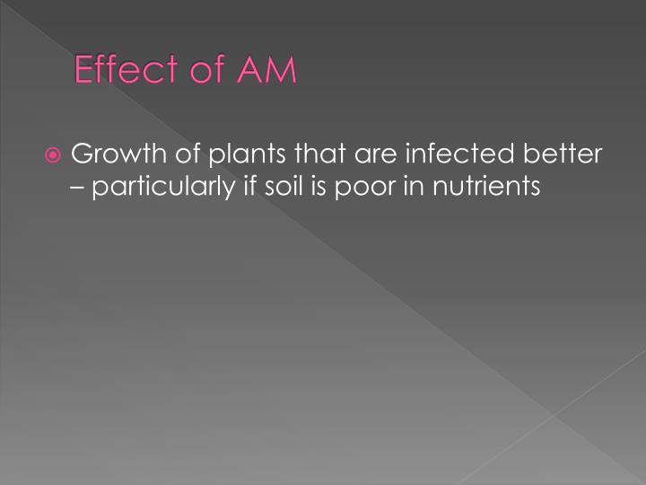 Effect of AM