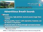 adventitious breath sounds1