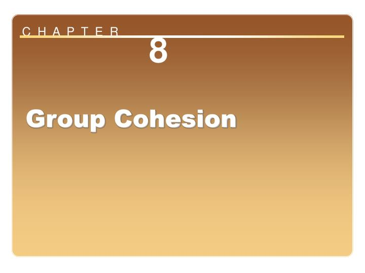 chapter 8 group cohesion n.
