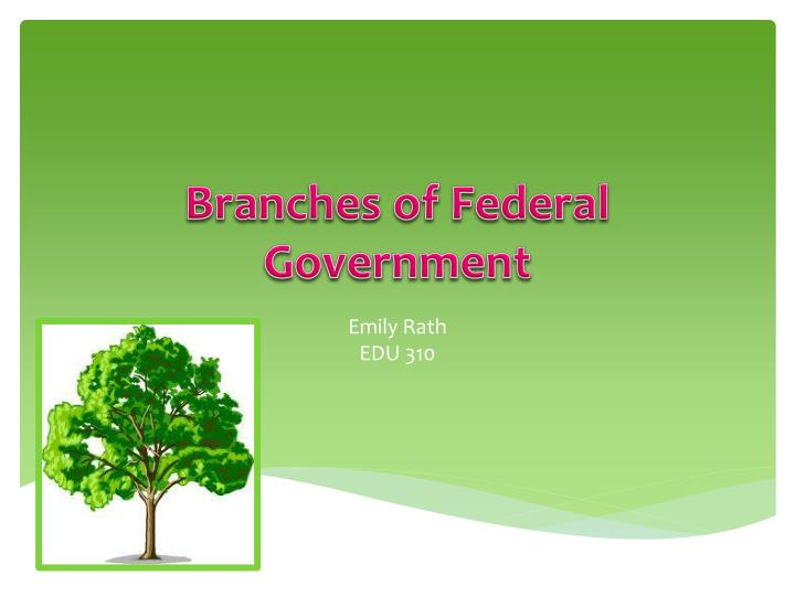 branches of federal government n.