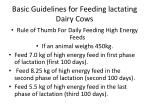 basic guidelines for feeding lactating dairy cows2