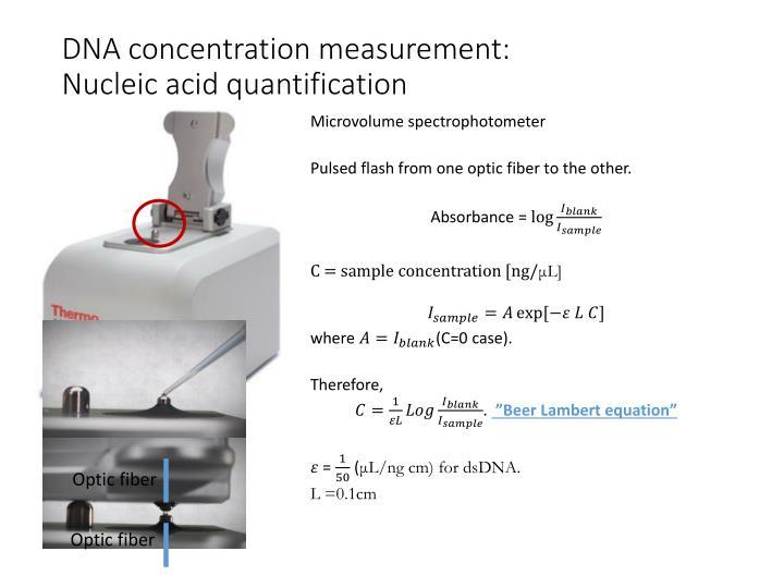 DNA concentration measurement:
