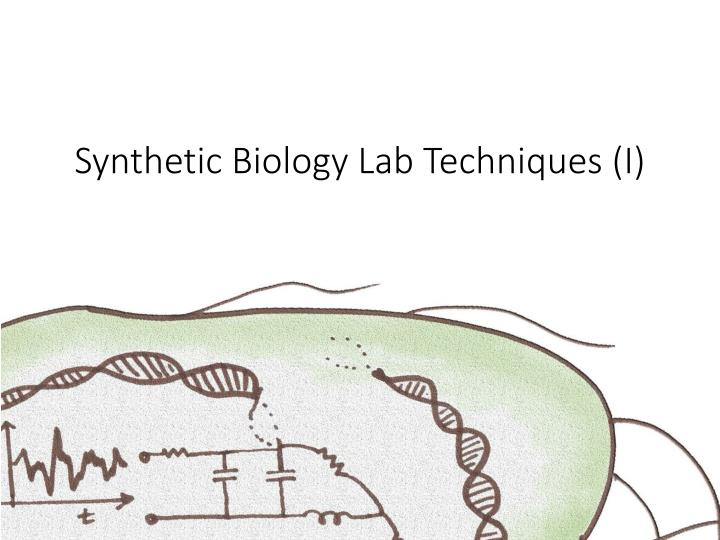 Synthetic biology lab techniques i