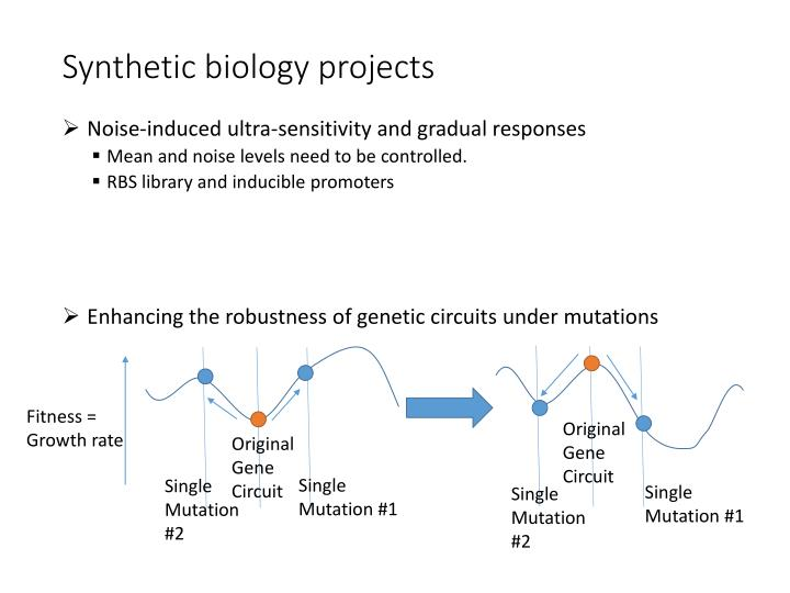 Synthetic biology projects