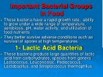 important bacterial groups in food