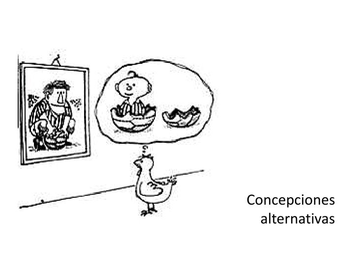 Concepciones alternativas