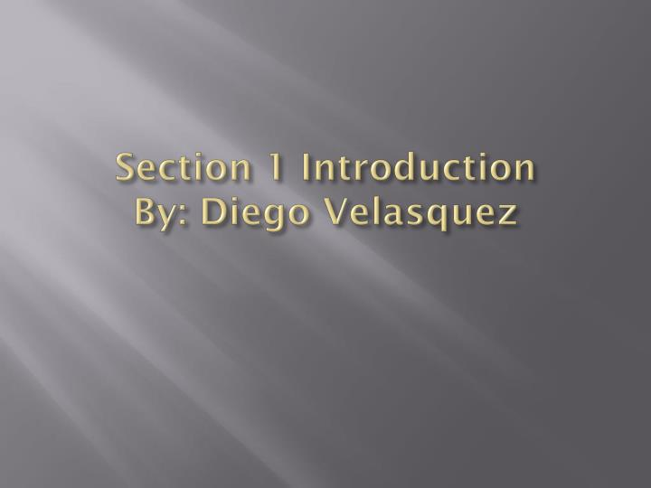 Section 1 introduction by diego velasquez