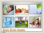 basic brain needs