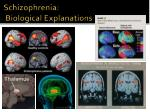 schizophrenia biological explanations