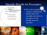 identify details for examples
