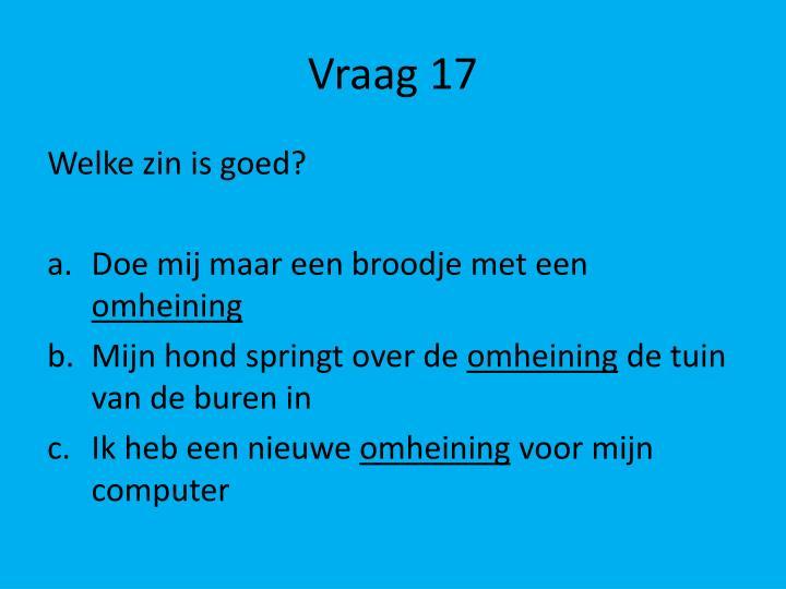 Vraag 17
