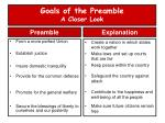 goals of the preamble a closer look