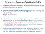 combustion dynamics activities in enea