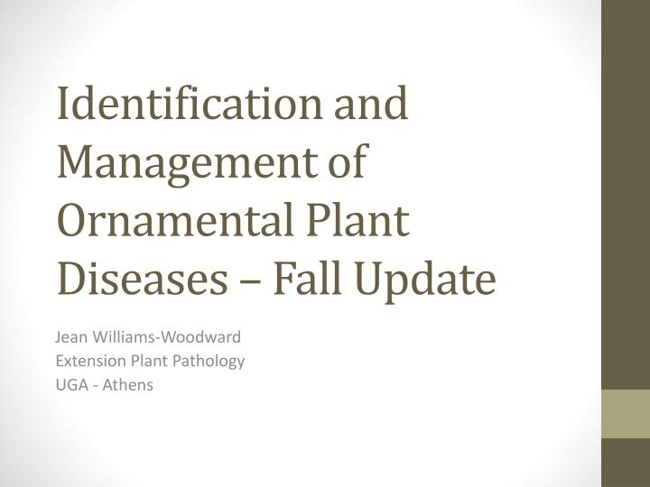 Identification And Management Of Ornamental Plant Diseases Fall Update