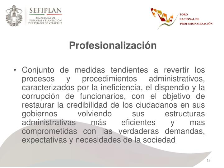 Profesionalización