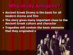 why study antigone