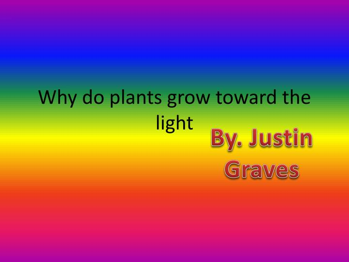 why do plants grow toward the light