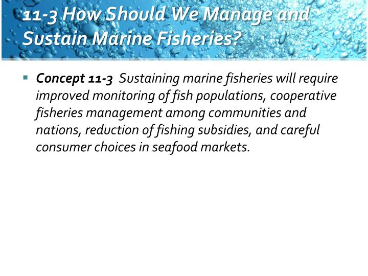 11-3 How Should We Manage and Sustain Marine Fisheries?